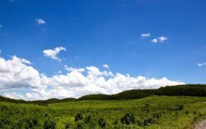 خرید اینترنتی هوای پاک اکالا