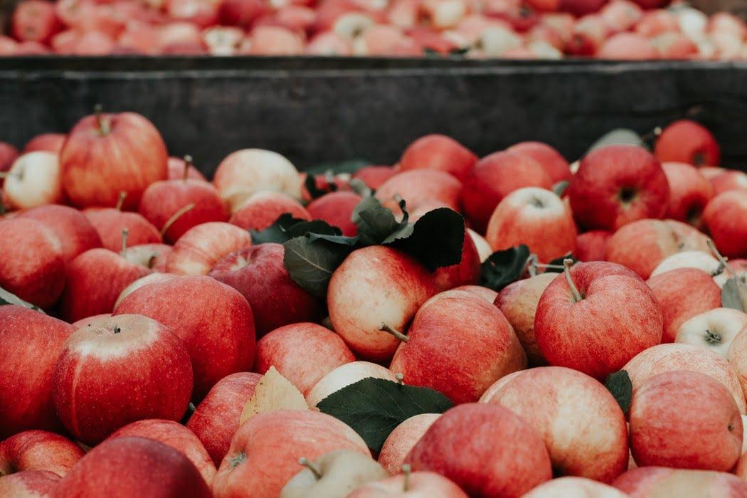 میوه سیب
